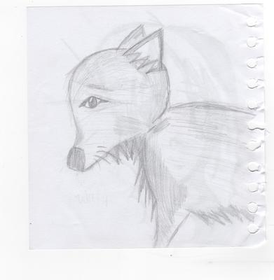 TEH WOLFY. <i>If you look closely, you will see an anime girl c:</i>
