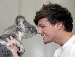 Louis+Koala=luv
