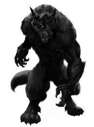 jeremy wolf form