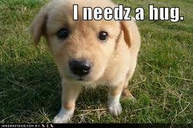 He Needs A Hug!
