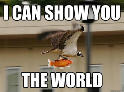 I Can Show You The World!