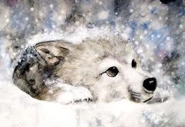 wolf cud art