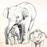 elephant_love13 - US