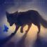 darkwolfgirl