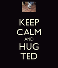 keep calm and hug ted